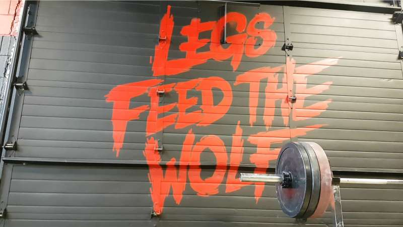 legs feed the wolf motif on our gym walls